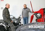 Boxer Bolognese